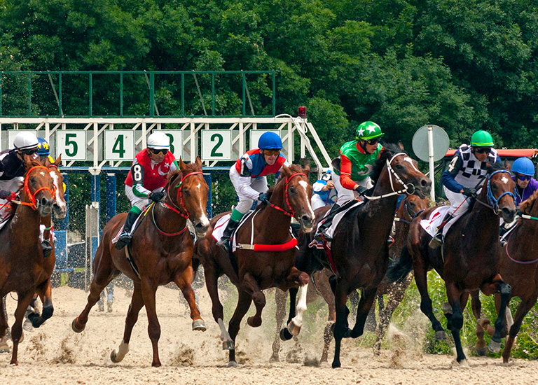 Belmont Stakes race